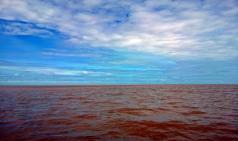 [선교칼럼] 물 축제와 관련한 슬픈기억(캄보디아)