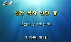 (설교) 선한 목자 선한 양 - 정하태목사(모자이크교회)